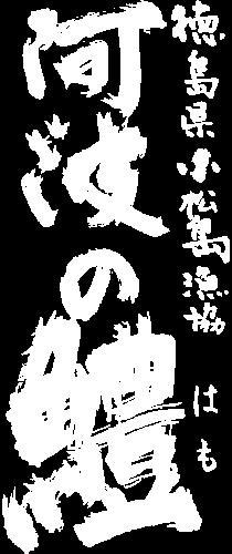 徳島県小松島漁協「阿波の鱧(はも)」